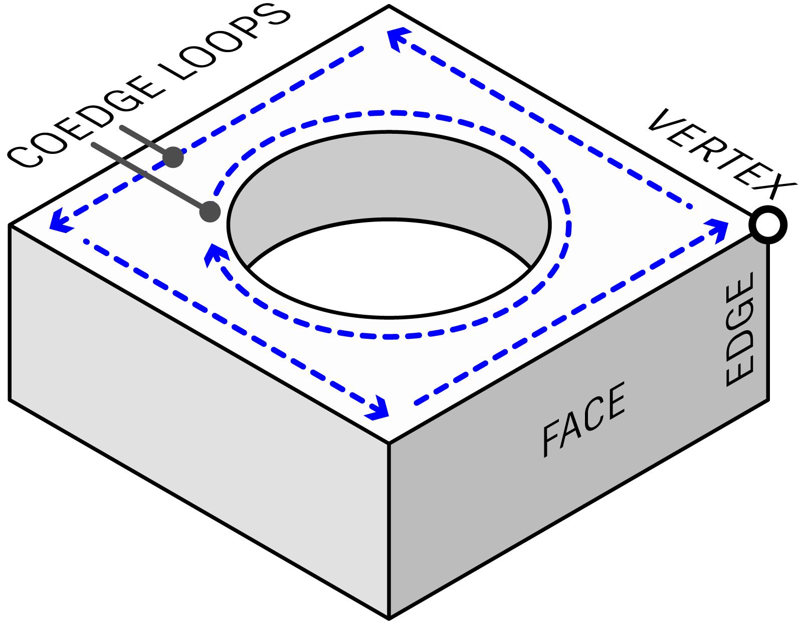 Boundary representation (B-Rep) solid model diagram